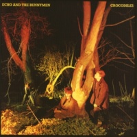 Echo And The Bunnymen Pride