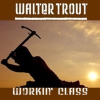 Walter Trout Workin' Class