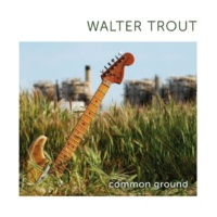 Walter Trout Danger Zone