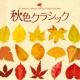 ハンスイェルク・シェレンベルガー/イタリア合奏団 マルチェッロ:オーボエ協奏曲 ニ短調 第2楽章(ベニスの愛)