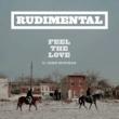 Rudimental Feel The Love (feat. John Newman)