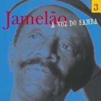 Jamelão O samba é bom assim
