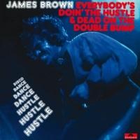 James Brown Papa's Got A Brand New Bag