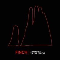Finch Two Guns To The Temple