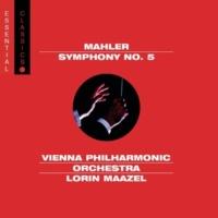 Lorin Maazel 交響曲第5番嬰ハ短調 第1楽章 もとのテンポで