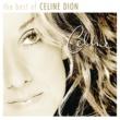 Celine Dion トゥー・ラヴ・ユー・モア