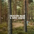 Deacon Blue Bethlehem Begins