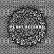 V.A. PLANT RECORDS V.A. BLACK