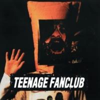 Teenage Fanclub Bad Seed