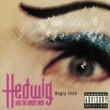 Hedwig And The Angry Inch Angry Inch (P.Q.M. Little Bugle Beats)