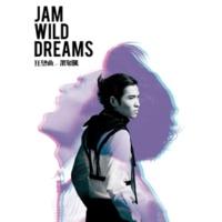 Jam Hsiao Wild Dreams