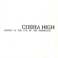 Cobra High Awesomeology