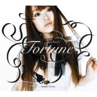 Sowelu Fortune (less vocal)