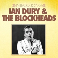 Ian Dury & The Blockheads What A Waste!