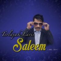 Saleem Stanza Sepi Sekeping Hati