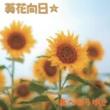 あべひろゆき 葵花向日