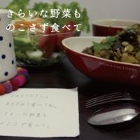 DON'S FACTORY/おかもと えみ きらいな野菜ものこさず食べて (feat. おかもと えみ)