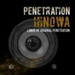 HINOWA PENETRATION.