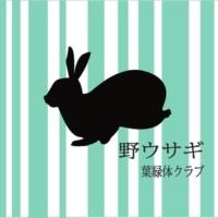 葉緑体クラブ 野ウサギ