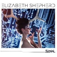 ELIZABETH SHEPHERD Willow