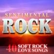 The Road Drifters Sentimental Rock - 40 Soft Rock Love Songs