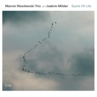 マルチン・ボシレフスキ・トリオ/JOAKIM MILDER Spark Of Life