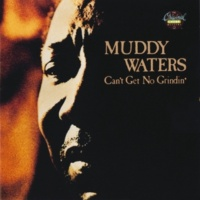 Muddy Waters Whiskey No Good