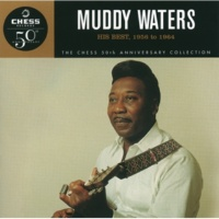 Muddy Waters Got My Mojo Working [Single Version]