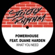 Powerhouse What You Need (feat. Duane Harden) [Full Intention Radio Edit]