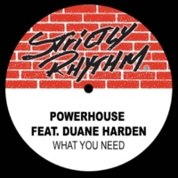 Powerhouse What You Need (feat. Duane Harden)