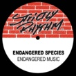 Endangered Species Ping Pong (Re-Pinged House Remix)