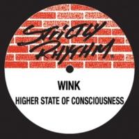 Josh Wink Higher State of Consciousness (Tweekin Acid Funk)