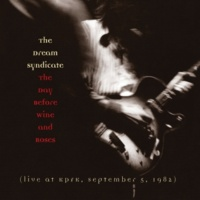 The Dream Syndicate The Days Of Wine And Roses (Live at KPFK)