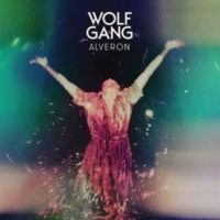 Wolf Gang Underneath The Night