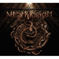 MESHUGGAH DEMIURGE(The Ophidian Trek Tour)