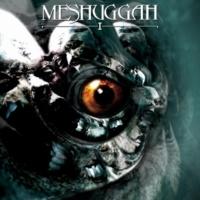 MESHUGGAH BLEED (LIVE)