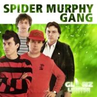 Spider Murphy Gang Wo bist du?