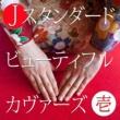 Various Artists Jスタンダード ビューティフル カヴァーズ Vol.1