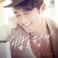 Ahn Jae Wook Hardly Necessary to Say