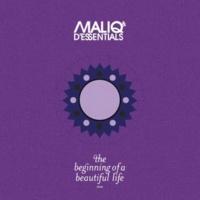 Maliq & d'Essentials Menari