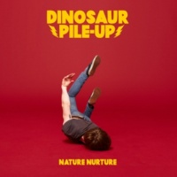 Dinosaur Pile-up Nature Nurture (Japan Edition)