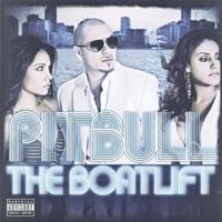 Don Omar & Pitbull Fuego (DJ Buddha Remix)