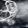 陰陽座 雲は龍に舞い、風は鳳に歌う