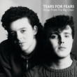 Tears For Fears Songs From The Big Chair [Deluxe]