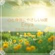 Relax α Wave 心と身体にやさしいα波 ~ Enya オルゴール・ベスト