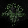 After The Burial Rareform [Re-Issue]