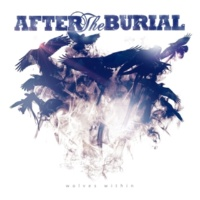 After The Burial Anti-pattern