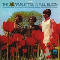 マーヴェレッツ Now Is The Time For Love
