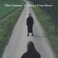 Eliot Sumner I Followed You Home