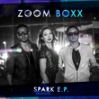 Zoom Boxx Sinners Party